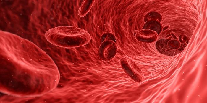 esami del sangue